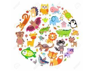 Estores enrollables infantiles para ni os personalizados con su nombre - Estores personalizados con fotos ...